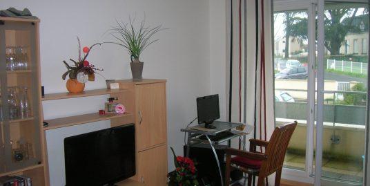 Très bel appartement environnement agréable à Joué-les-Tours (37)